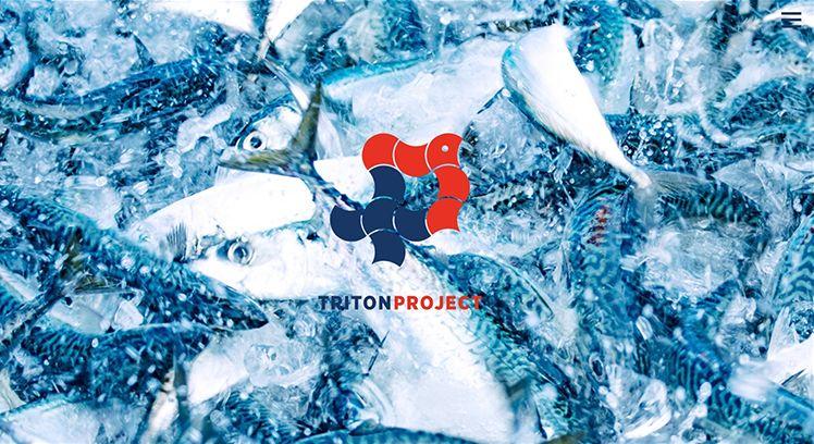 TRITON PROJECTのHP
